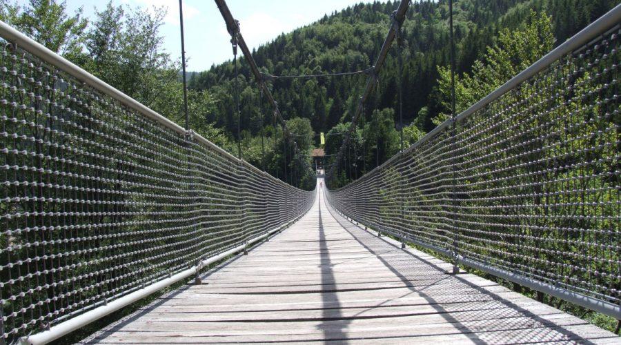 Hängebrücke im Steinwasenpark