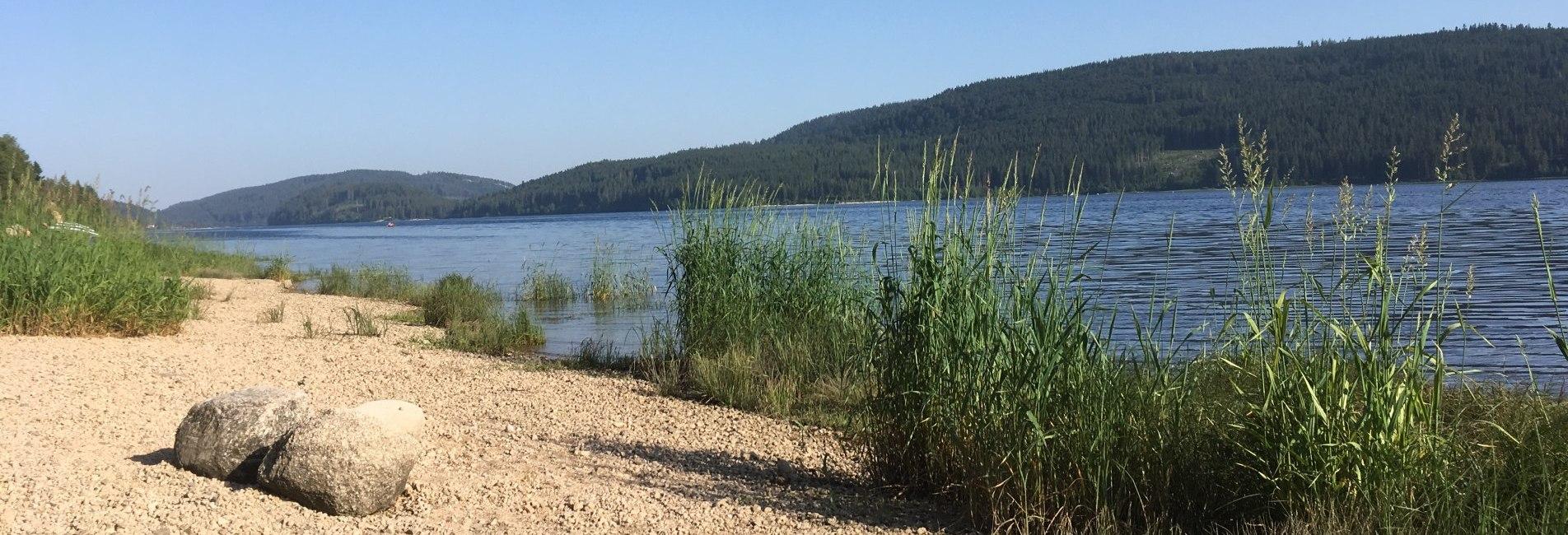 Schluchsee-Strand